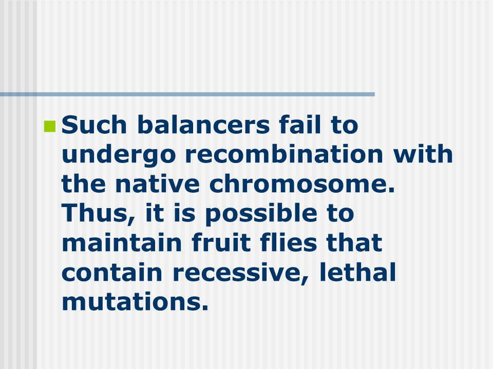 Such balancers fail to undergo recombination with the native chromosome.