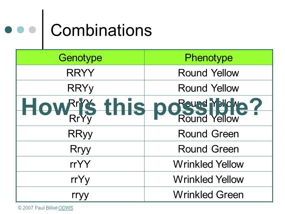 Combinations GenotypePhenotype RRYYRound Yellow RRYyRound Yellow RrYYRound Yellow RrYyRound Yellow RRyyRound Green RryyRound Green rrYYWrinkled Yellow rrYyWrinkled Yellow rryyWrinkled Green © 2007 Paul Billiet ODWSODWS How is this possible