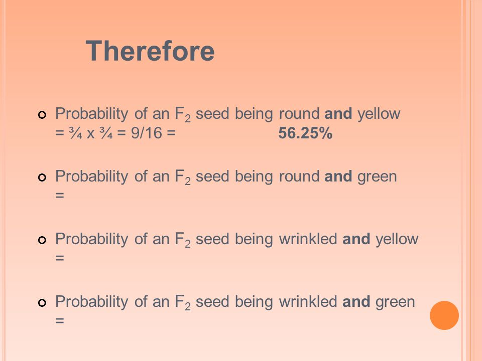 Therefore Probability of an F 2 seed being round and yellow = ¾ x ¾ = 9/16 =56.25% Probability of an F 2 seed being round and green = Probability of an F 2 seed being wrinkled and yellow = Probability of an F 2 seed being wrinkled and green =