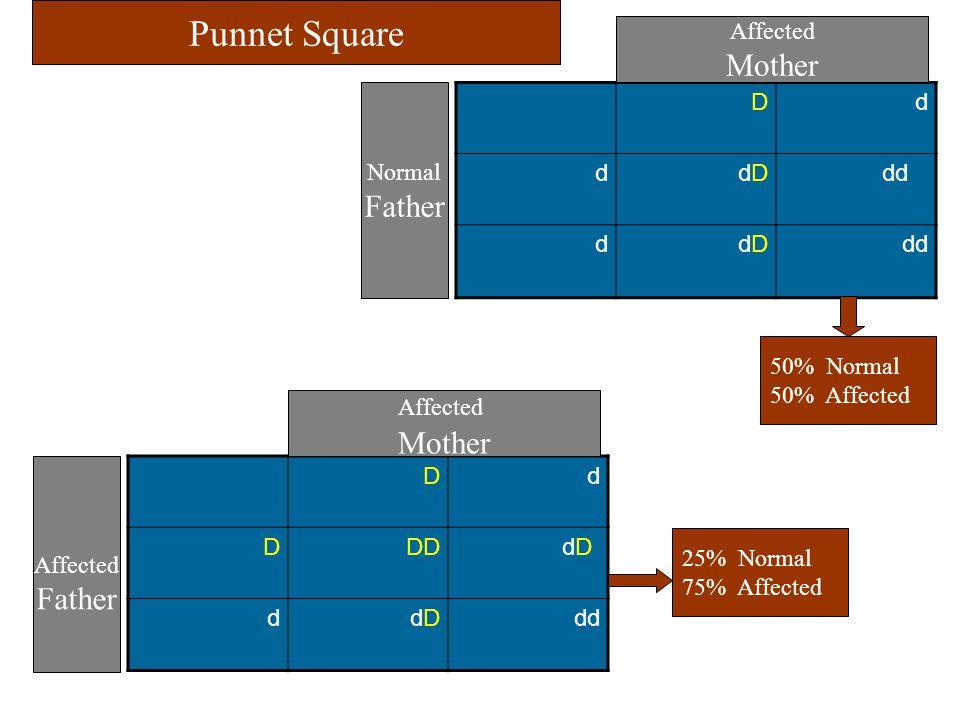 D d D DD dD d dd Affected Mother Affected Father D d d dD dd d dD dd Affected Mother Normal Father Punnet Square 50% Normal 50% Affected 25% Normal 75