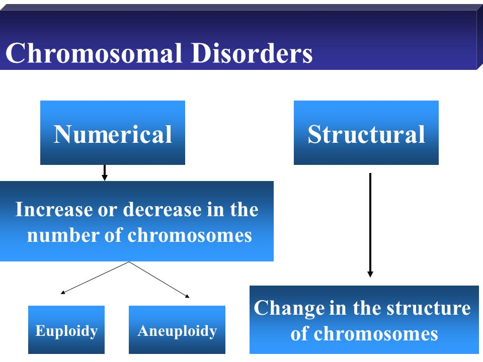 Chromosomal Disorders Increase or decrease in the number of chromosomes Change in the structure of chromosomes NumericalStructural EuploidyAneuploidy