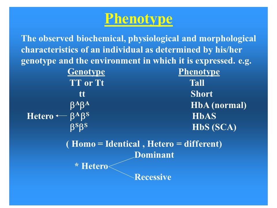 Phenotype The observed biochemical, physiological and morphological characteristics of an individual as determined by his/her genotype and the environ