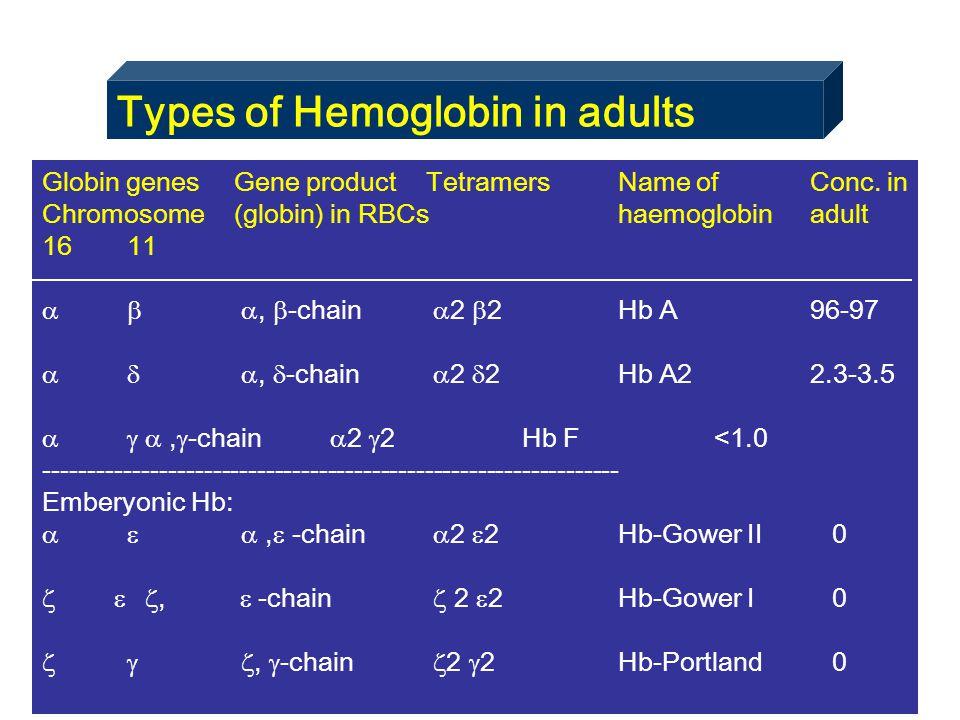Types of Hemoglobin in adults Globin genesGene productTetramersName ofConc. in Chromosome(globin)in RBCshaemoglobinadult 16 11   ,  -chain  2  2