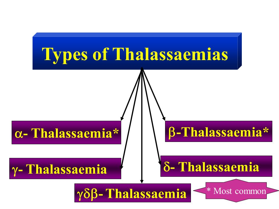 Types of Thalassaemias  - Thalassaemia*  -Thalassaemia*  - Thalassaemia  - Thalassaemia  - Thalassaemia * Most common