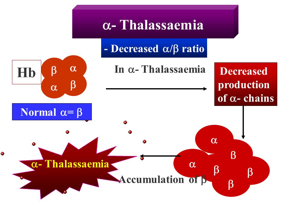  - Thalassaemia Hb In  - Thalassaemia Decreased production of  - chains     - Decreased  /  ratio  - Thalassaemia   Normal  =      A