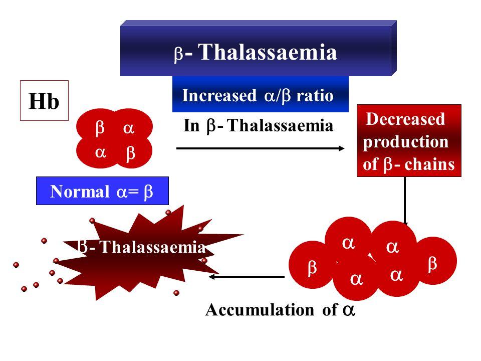  - Thalassaemia Hb In  - Thalassaemia Decreased production of  - chains  Increased  /  ratio  - Thalassaemia    Normal  =       Accu