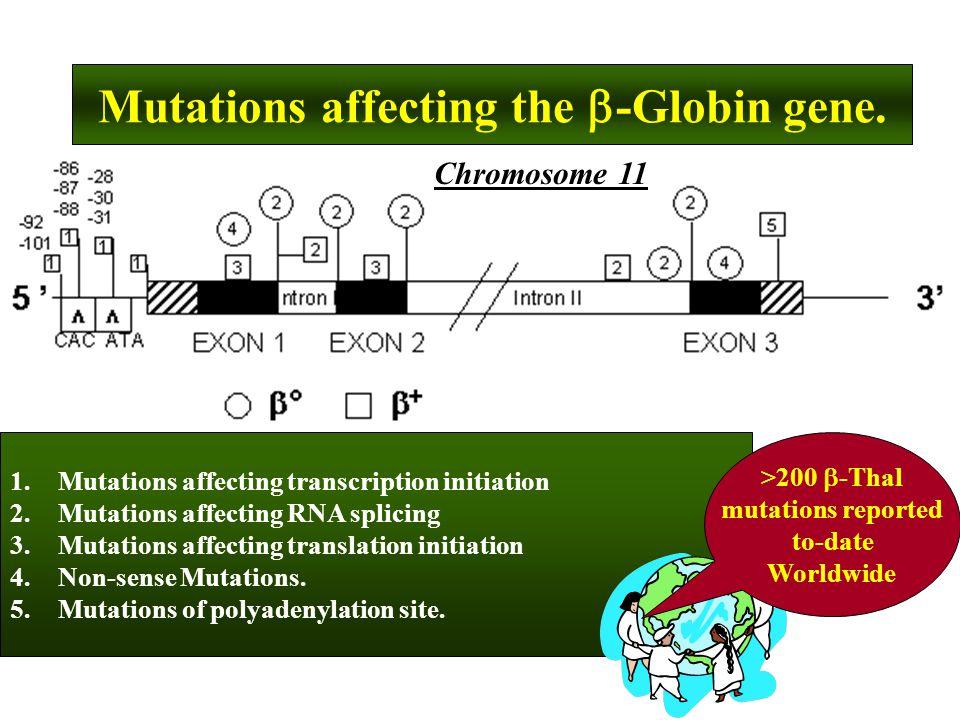1.Mutations affecting transcription initiation 2.Mutations affecting RNA splicing 3.Mutations affecting translation initiation 4.Non-sense Mutations.