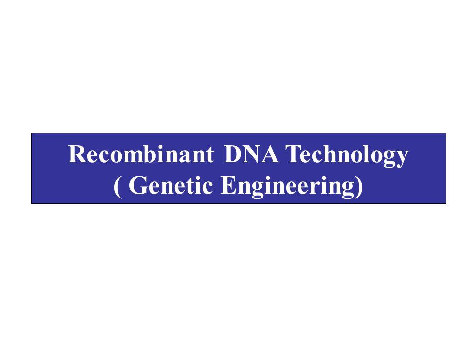 Recombinant DNA Technology ( Genetic Engineering)