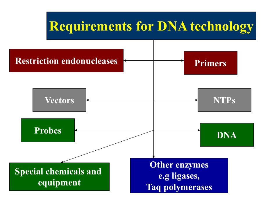 Requirements for DNA technology Restriction endonucleases Vectors Probes Other enzymes e.g ligases, Taq polymerases Primers NTPs Special chemicals and