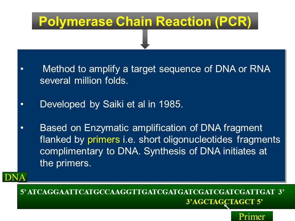 Method to amplify a target sequence of DNA or RNA several million folds. Developed by Saiki et al in 1985. Based on Enzymatic amplification of DNA fra
