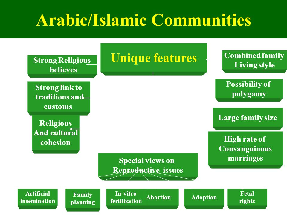 Arabic/Islamic Communities Unique features Strong Religious believes Combined family Living style Strong link to traditions and customs High rate of C
