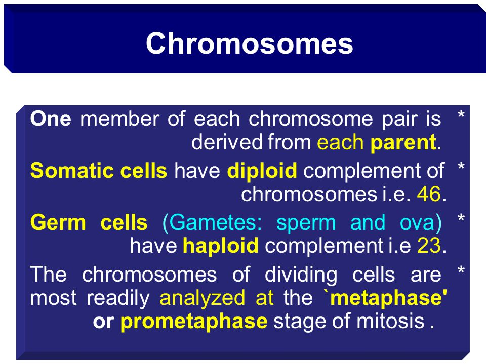 Chromosomes *One member of each chromosome pair is derived from each parent. *Somatic cells have diploid complement of chromosomes i.e. 46. *Germ cell