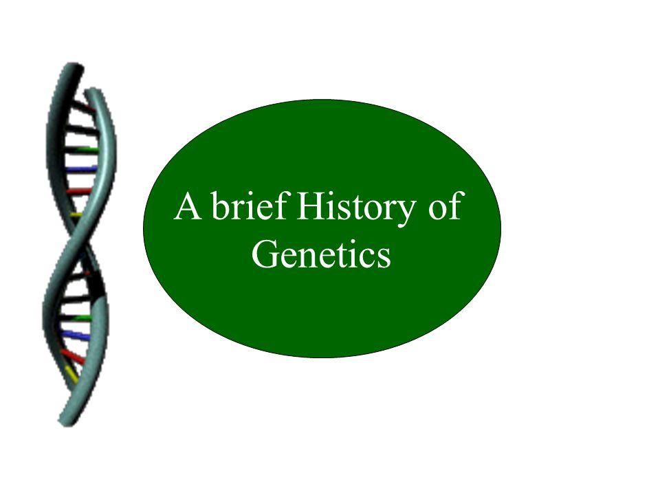A brief History of Genetics