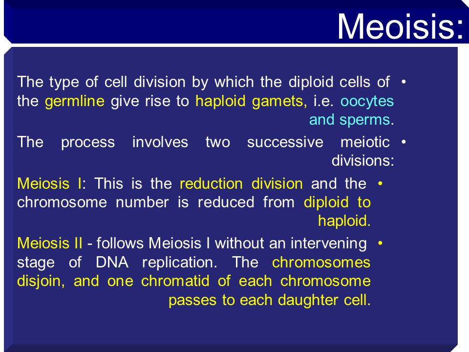 The type of cell division by which the diploid cells of the germline give rise to haploid gamets, i.e. oocytes and sperms. The process involves two su