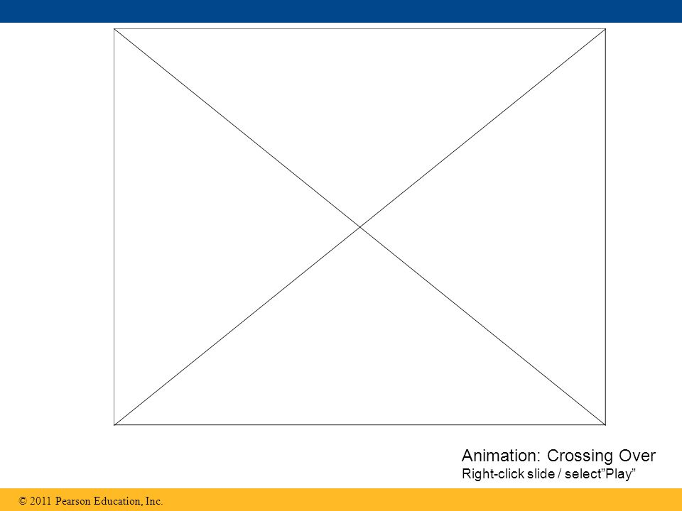 Animation: Crossing Over Right-click slide / select Play