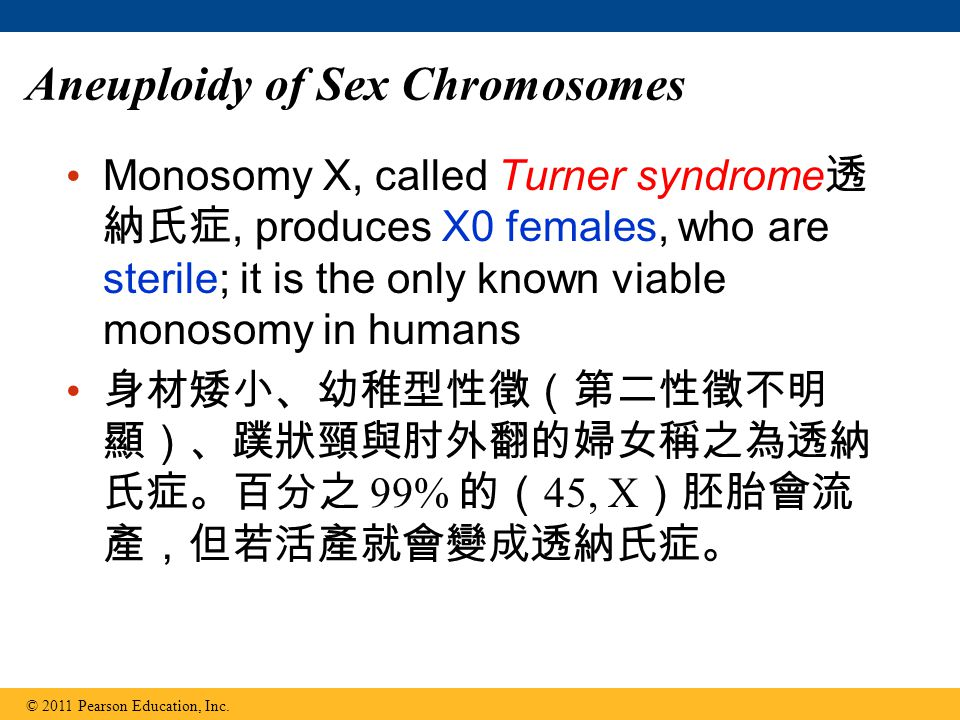 Aneuploidy of Sex Chromosomes Monosomy X, called Turner syndrome 透 納氏症, produces X0 females, who are sterile; it is the only known viable monosomy in humans 身材矮小、幼稚型性徵(第二性徵不明 顯)、蹼狀頸與肘外翻的婦女稱之為透納 氏症。百分之 99% 的( 45, X )胚胎會流 產,但若活產就會變成透納氏症。 © 2011 Pearson Education, Inc.