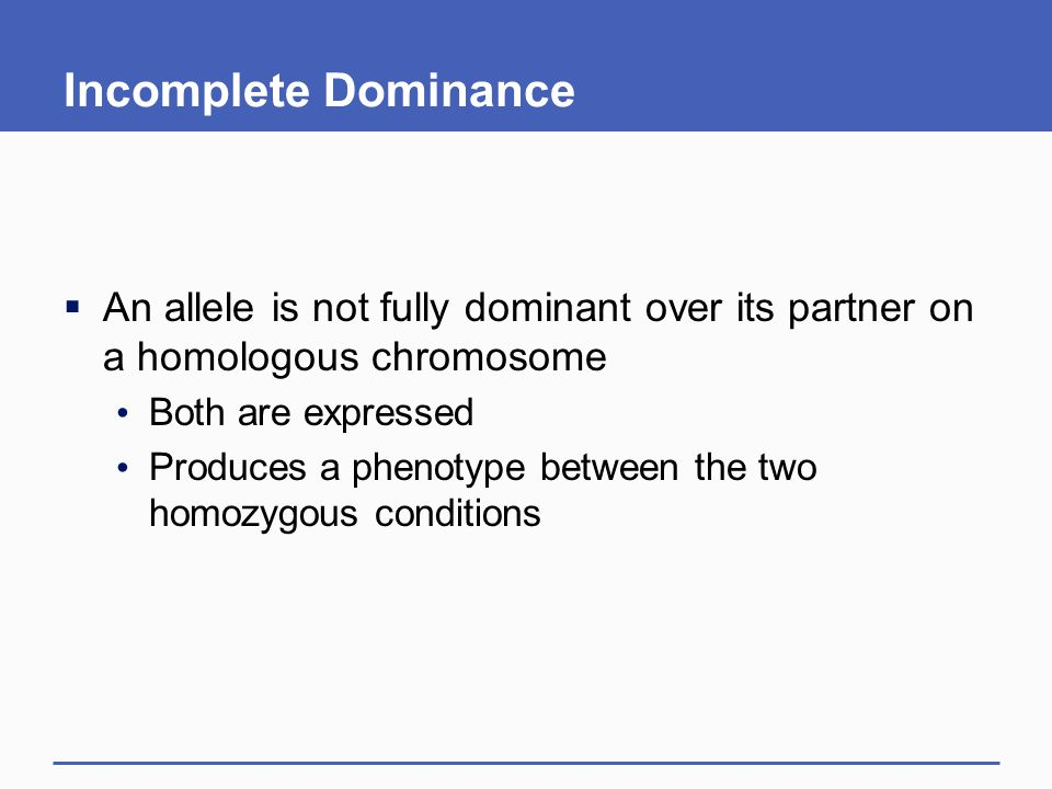 Incomplete Dominance  An allele is not fully dominant over its partner on a homologous chromosome Both are expressed Produces a phenotype between the