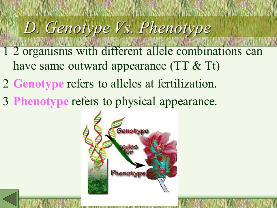 D. Genotype Vs.
