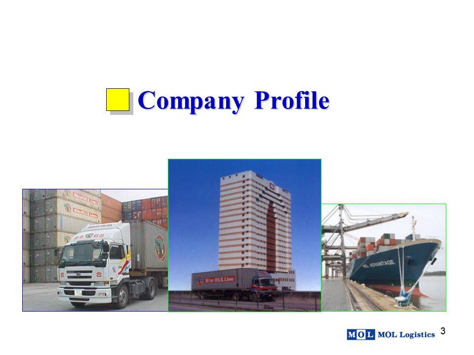 3 Company Profile