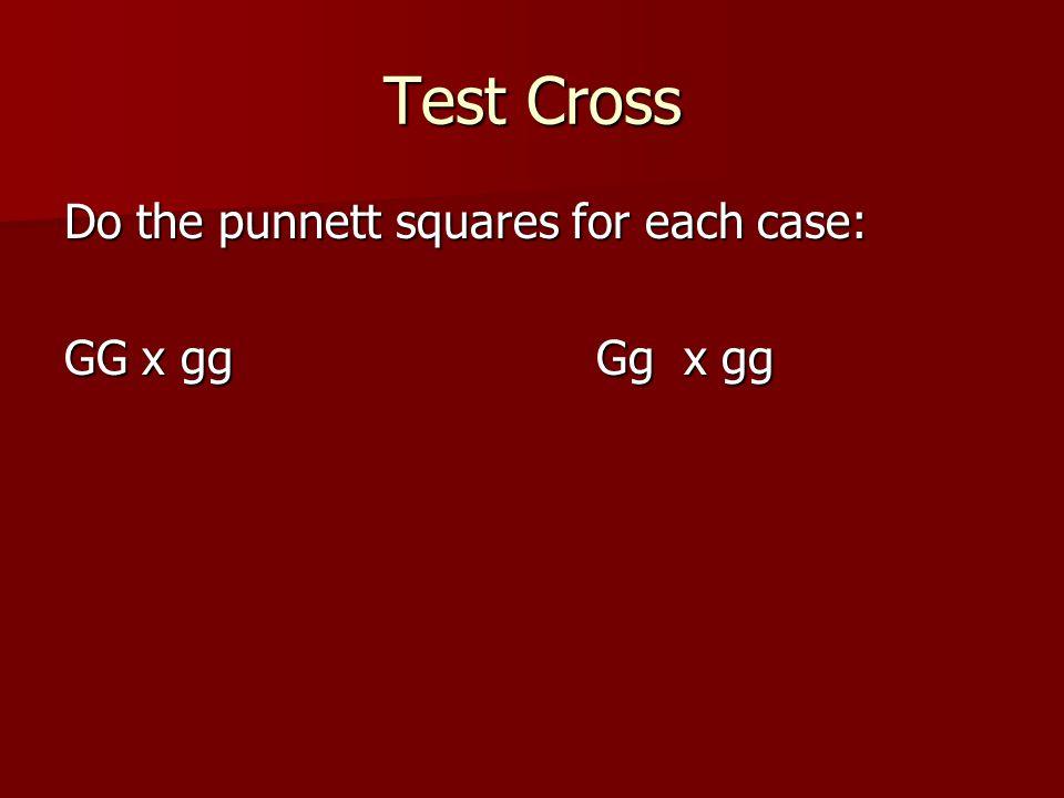 Test Cross Do the punnett squares for each case: GG x ggGg x gg