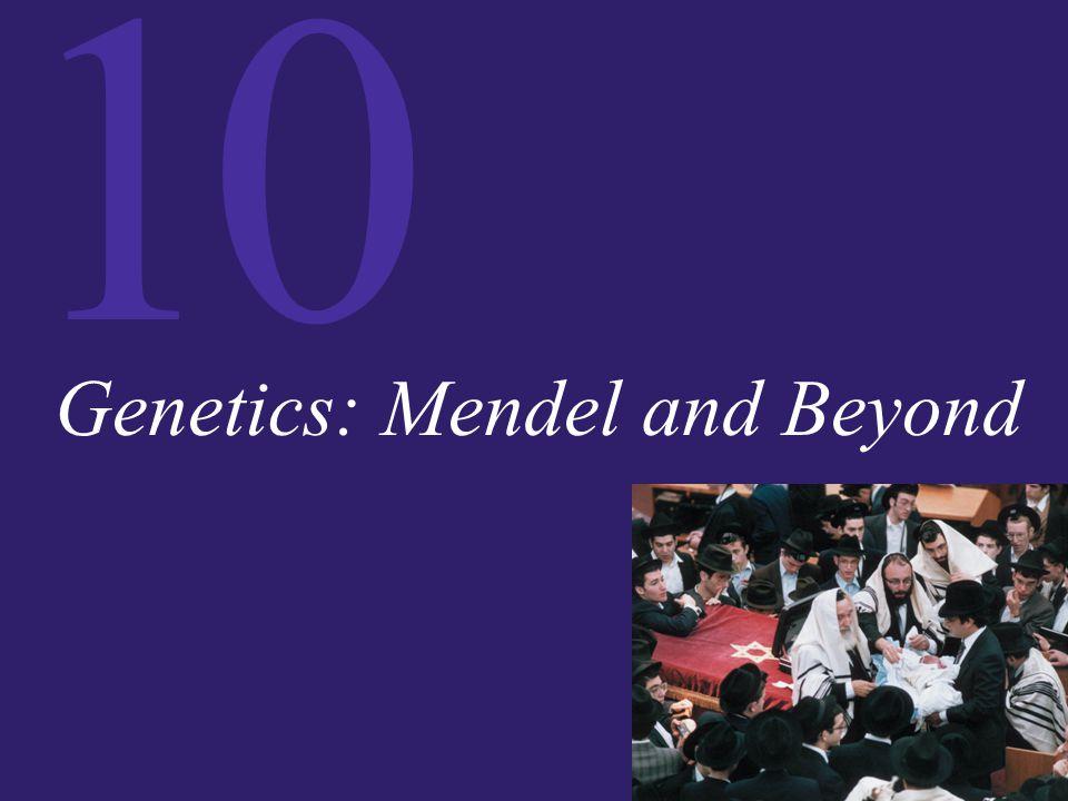 10 Genetics: Mendel and Beyond