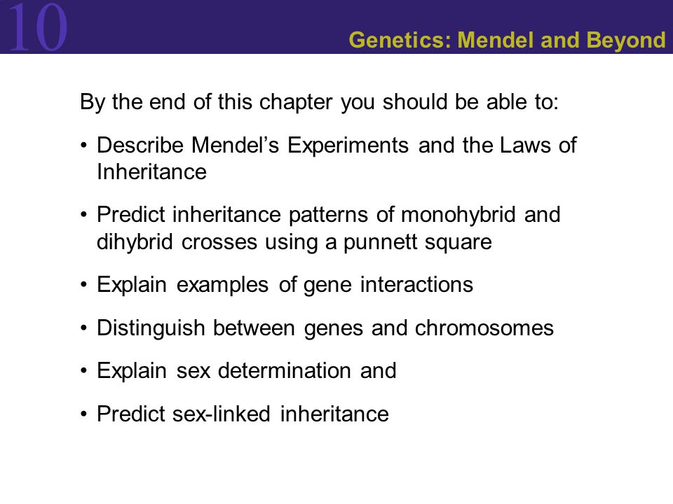 Figure 10.13 Incomplete Dominance Follows Mendel's Laws