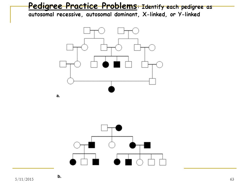 5/11/201563 Pedigree Practice Problems : Identify each pedigree as autosomal recessive, autosomal dominant, X-linked, or Y-linked