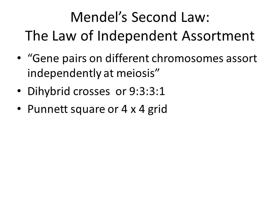 Mendel's Second Law: The Law of Independent Assortment Gene pairs on different chromosomes assort independently at meiosis Dihybrid crosses or 9:3:3:1 Punnett square or 4 x 4 grid