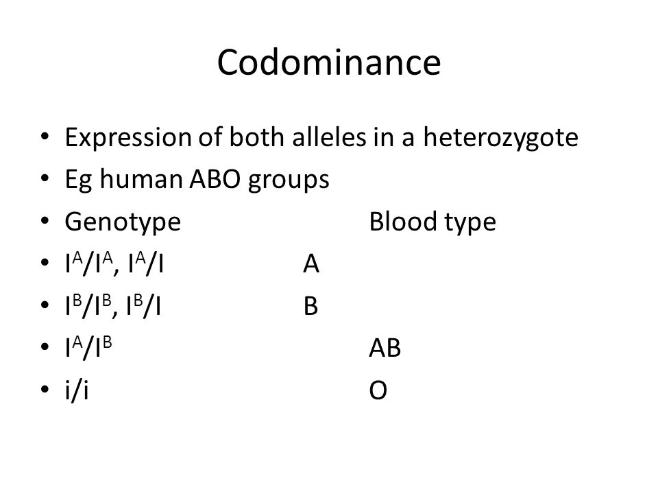 Codominance Expression of both alleles in a heterozygote Eg human ABO groups GenotypeBlood type I A /I A, I A /IA I B /I B, I B /IB I A /I B AB i/iO