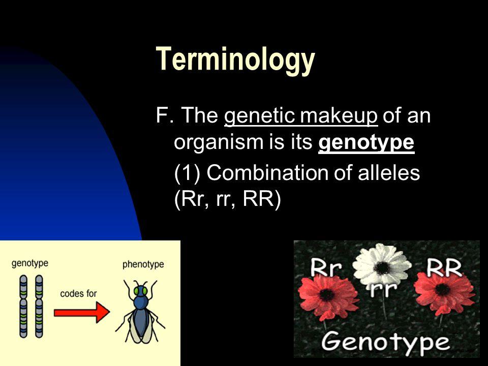 5/11/201521 Terminology F.
