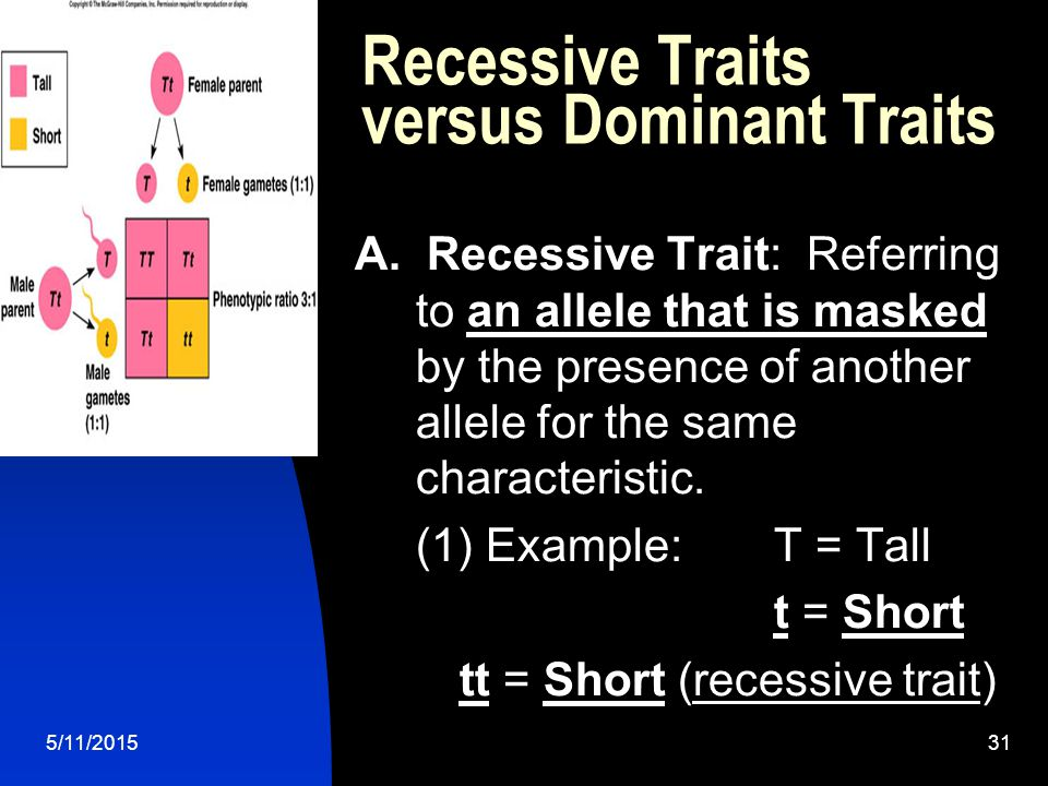 5/11/201531 Recessive Traits versus Dominant Traits A.