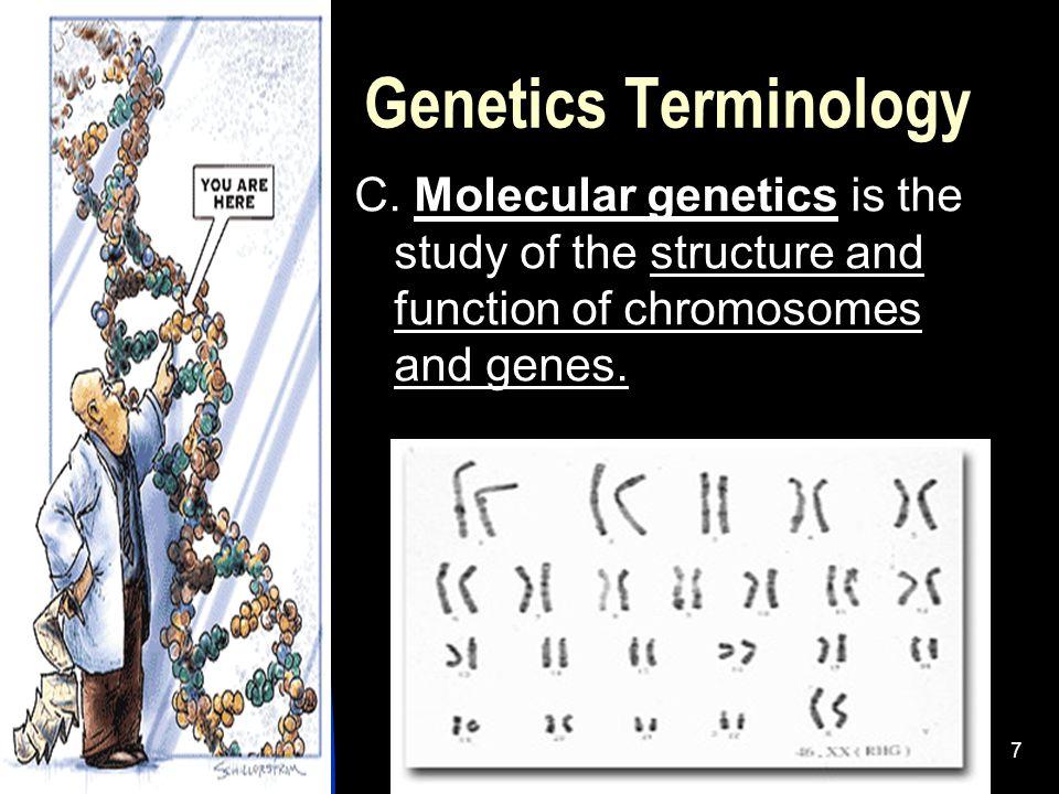 5/11/20157 Genetics Terminology C.