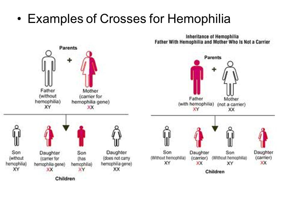 Examples of Crosses for Hemophilia