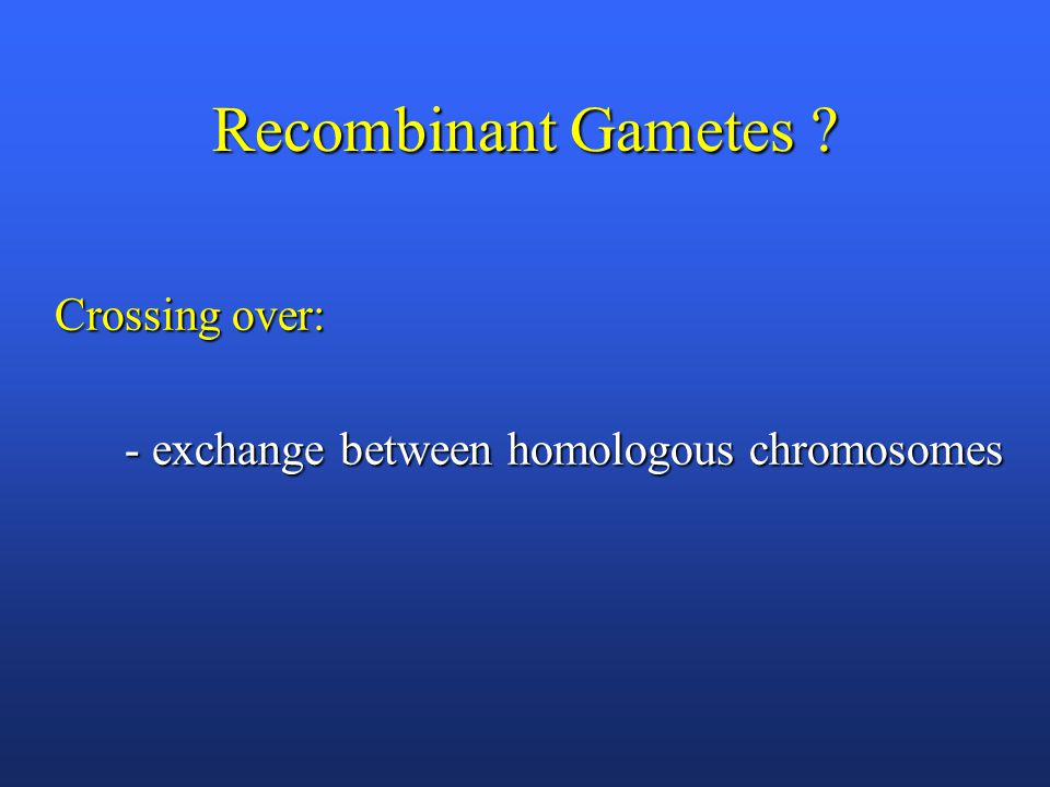 Recombinant Gametes ? Crossing over: - exchange between homologous chromosomes - exchange between homologous chromosomes