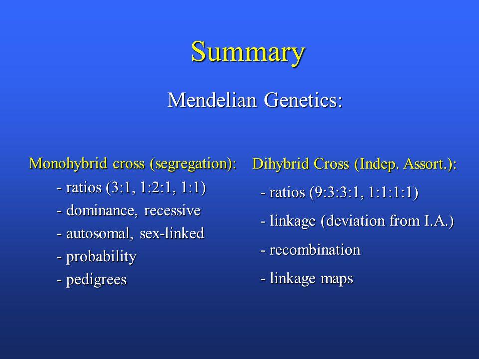 Summary Mendelian Genetics: Mendelian Genetics: Monohybrid cross (segregation): Monohybrid cross (segregation): - ratios (3:1, 1:2:1, 1:1) - ratios (3:1, 1:2:1, 1:1) - dominance, recessive - dominance, recessive - autosomal, sex-linked - autosomal, sex-linked - probability - probability - pedigrees - pedigrees Dihybrid Cross (Indep.