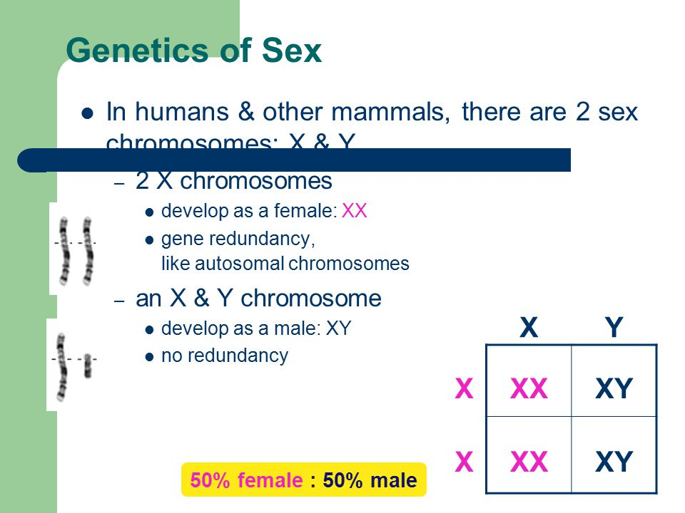 Linked genes http://bcs.whfreeman.com/thelifewire/content/ chp10/1002s.swf