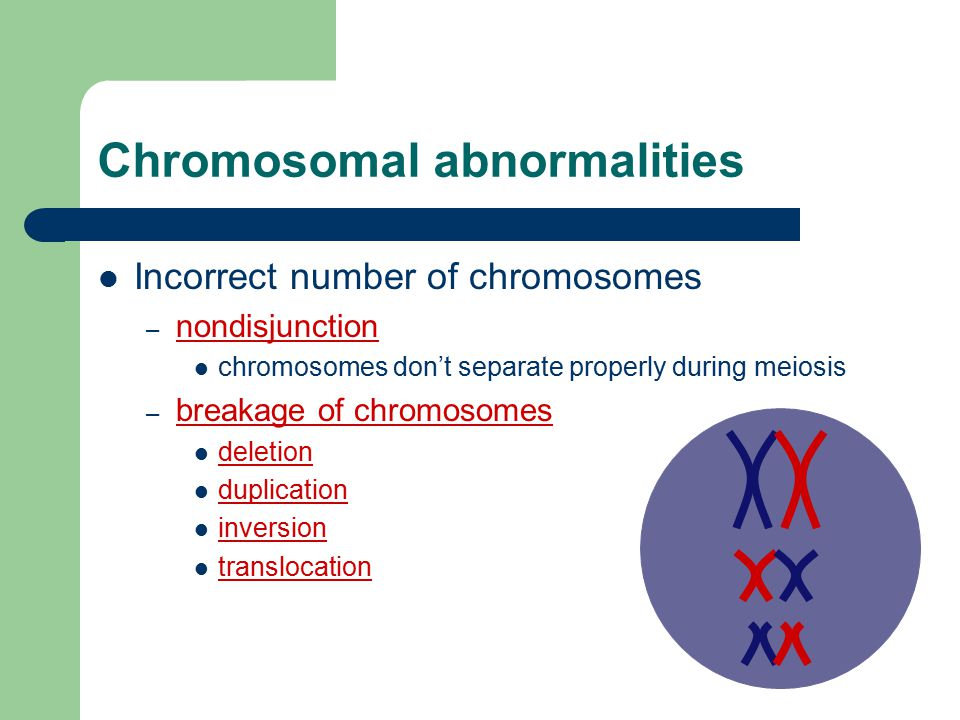 2006-2007 Errors of Meiosis Chromosomal Abnormalities
