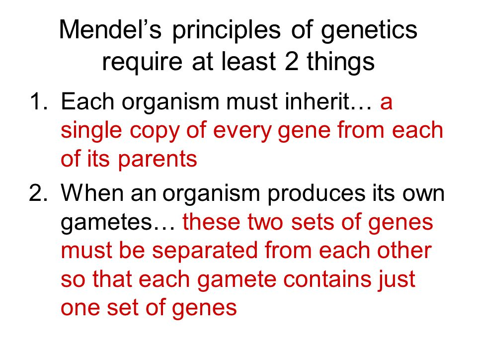 Mendel's principles of genetics require at least 2 things 1.Each organism must inherit… a single copy of every gene from each of its parents 2.When an