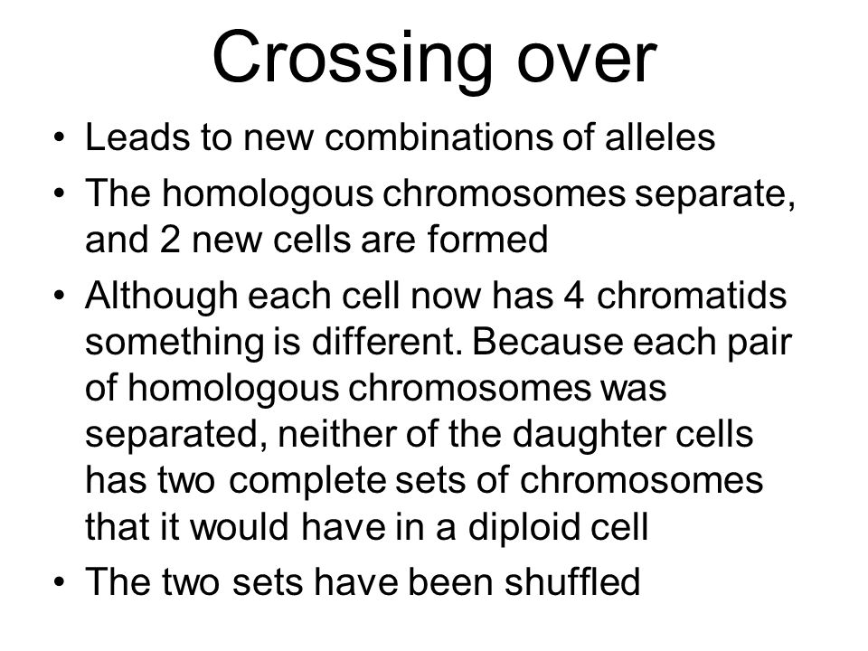 Crossing over Leads to new combinations of alleles The homologous chromosomes separate, and 2 new cells are formed Although each cell now has 4 chroma