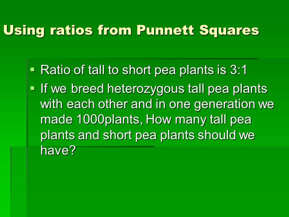 Using ratios from Punnett Squares  Ratio of tall to short pea plants is 3:1  If we breed heterozygous tall pea plants with each other and in one gen