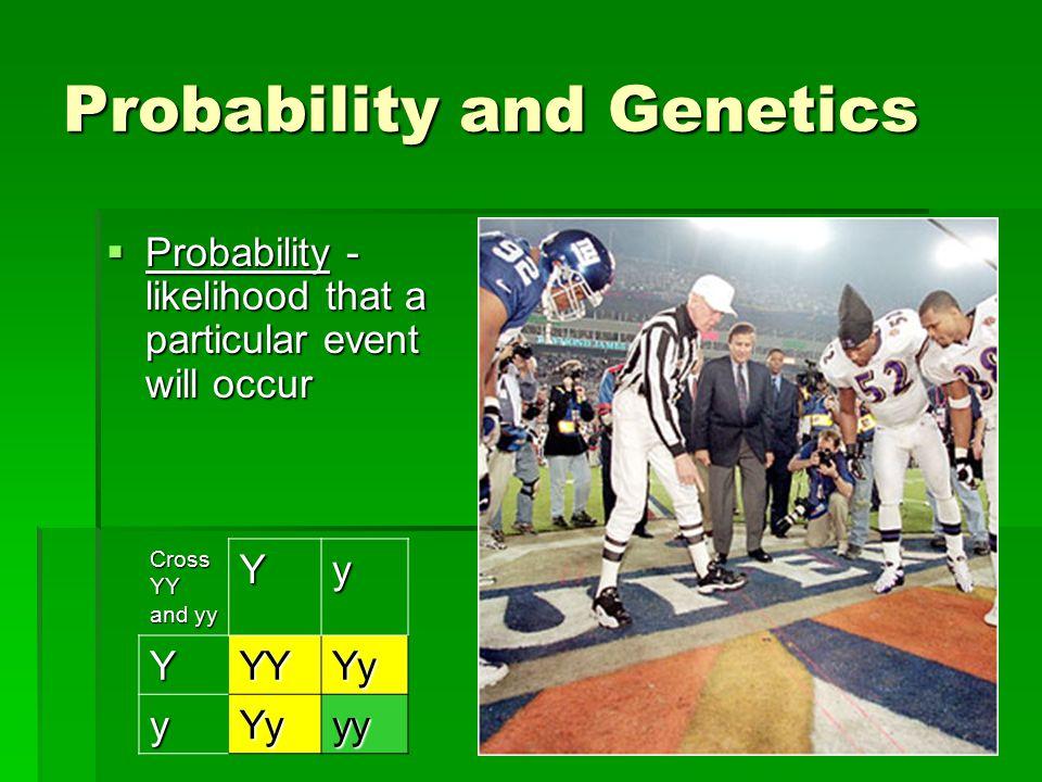 Probability and Genetics  Probability - likelihood that a particular event will occur Cross YY and yy YyYYYYy yYyyy