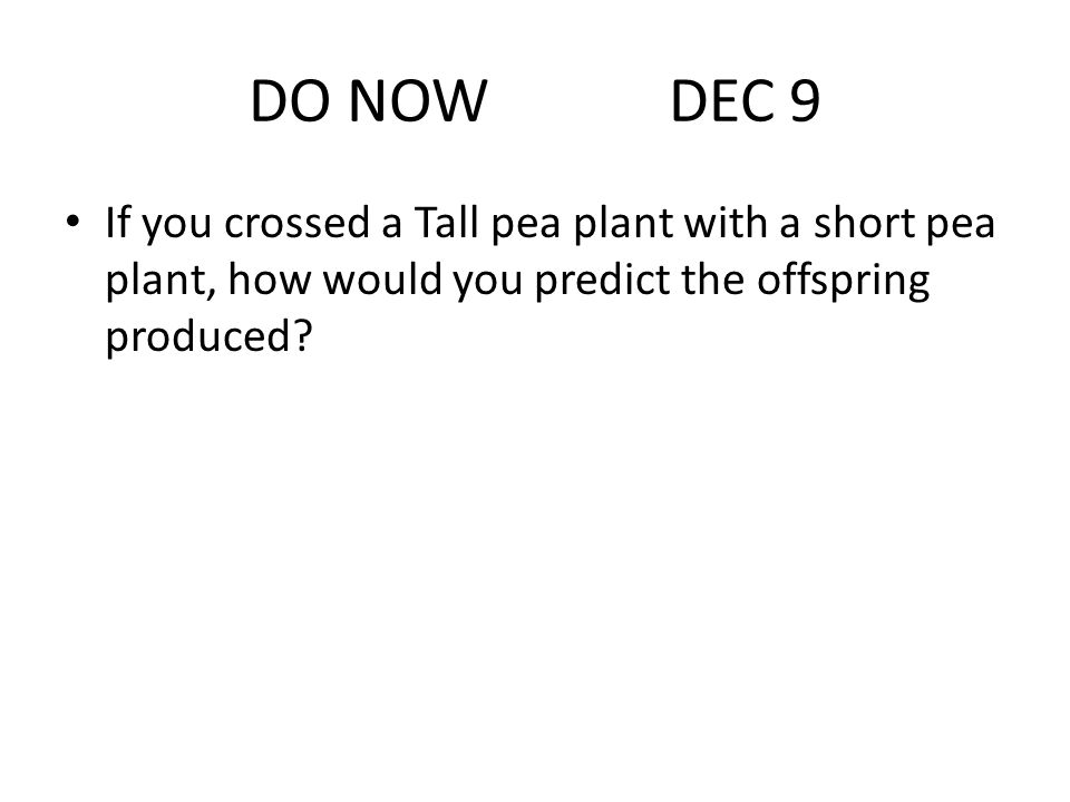 DO NOW DEC 9 If you crossed a Tall pea plant with a short pea plant, how would you predict the offspring produced?
