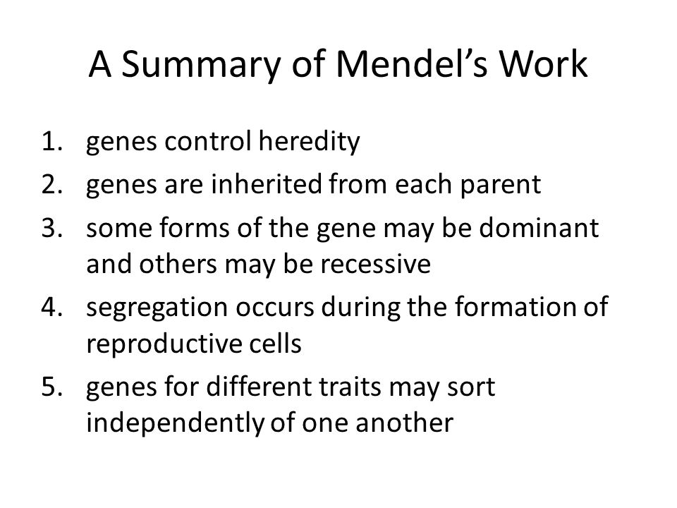 A Summary of Mendel's Work 1.genes control heredity 2.genes are inherited from each parent 3.some forms of the gene may be dominant and others may be recessive 4.segregation occurs during the formation of reproductive cells 5.genes for different traits may sort independently of one another