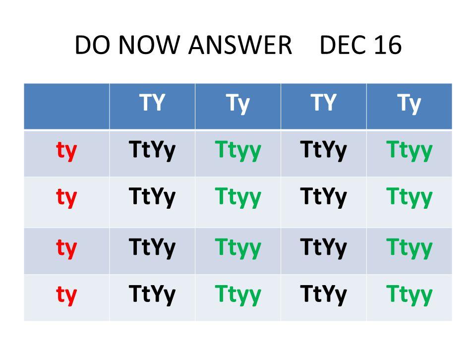 DO NOW ANSWER DEC 16 TYTyTYTy tyTtYyTtyyTtYyTtyy tyTtYyTtyyTtYyTtyy tyTtYyTtyyTtYyTtyy tyTtYyTtyyTtYyTtyy