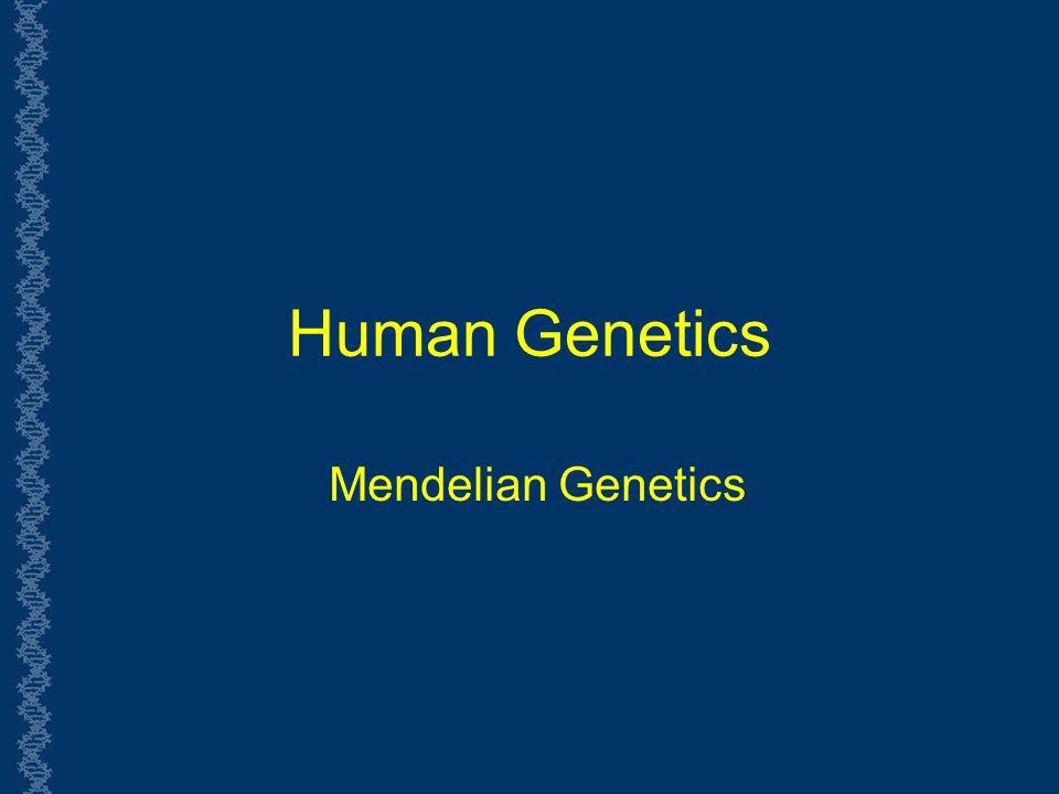 LE 14-6 Phenotype Purple 3 Genotype PP (homozygous Pp (heterozygous Pp (heterozygous pp (homozygous 1 2 1 Ratio 1:2:1 White Ratio 3:1 1