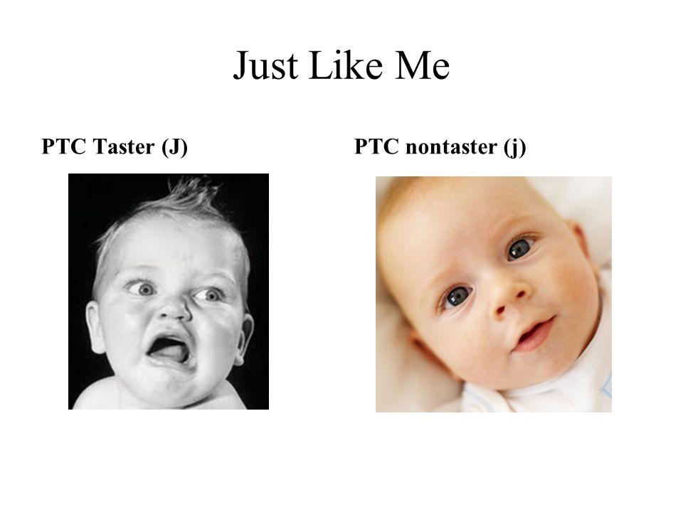 Just Like Me PTC Taster (J)PTC nontaster (j)
