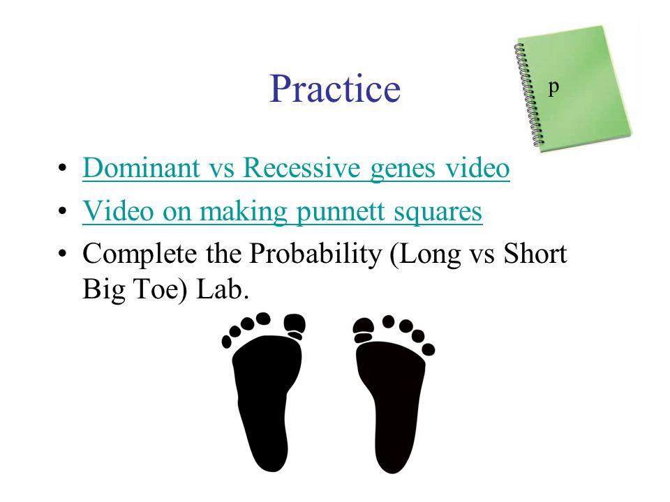 Practice Dominant vs Recessive genes video Video on making punnett squares Complete the Probability (Long vs Short Big Toe) Lab.