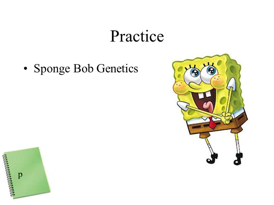 Practice Sponge Bob Genetics p