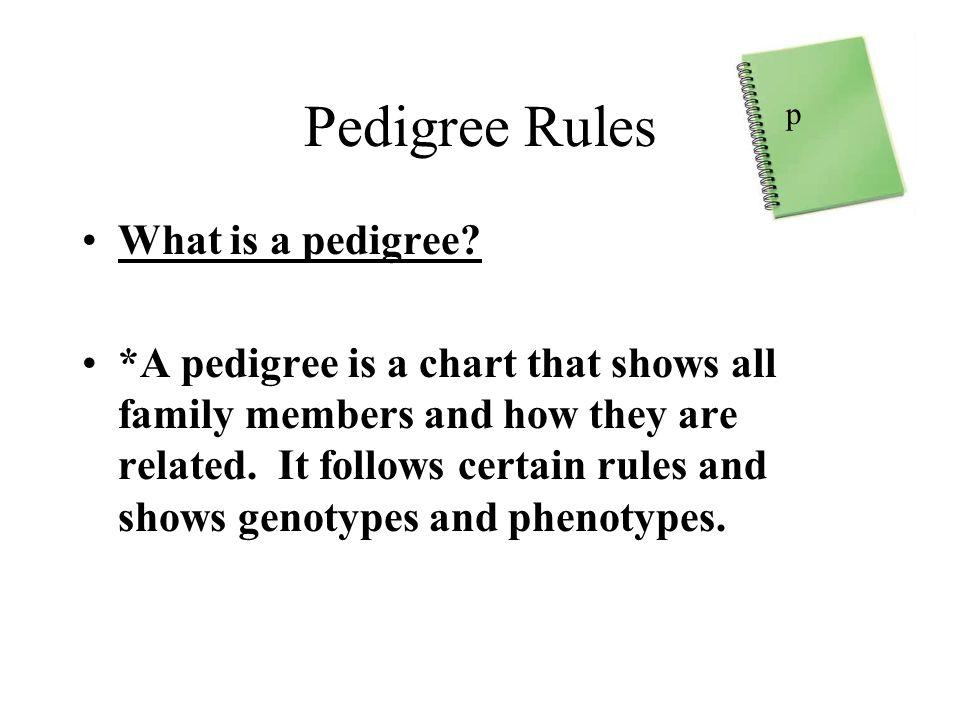 Pedigree Rules What is a pedigree.