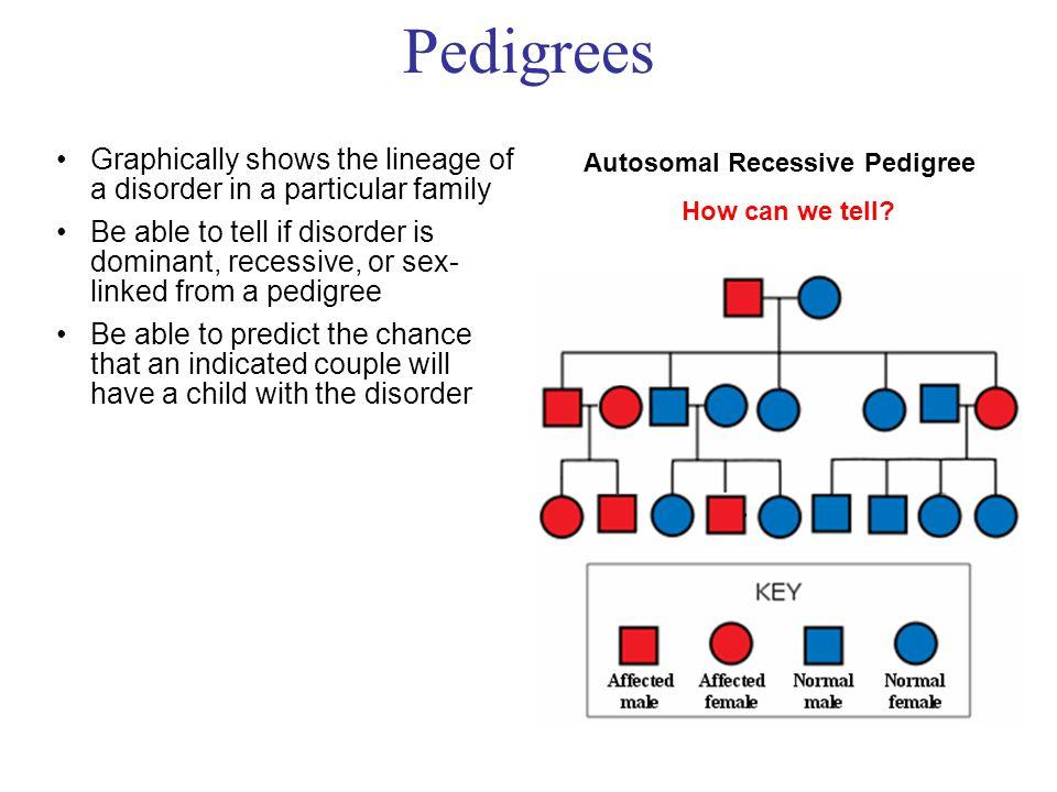 Pedigrees Autosomal Recessive Pedigree How can we tell.